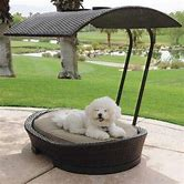 outdoor-dog-bed-with-canopy