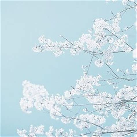 Baby Japan Blue 255 best images about pastel blue aesthetic on