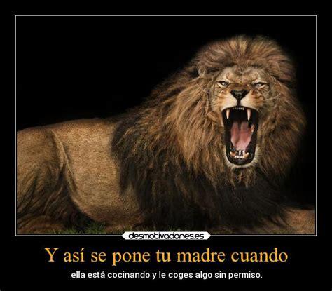 imagenes de leones con frases imagui carteles de leones desmotivaciones