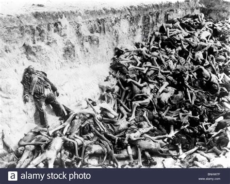 world war ii auschwitz a history from beginning to end books world war ii bergen belsen concentration c holocaust