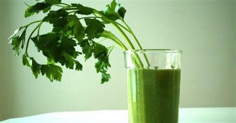 Cilantro Detox Headache by Foods For Liver Health