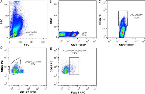 figure 1 regulatory t cell gating strategy for cd4 cd25 hi foxp3 cd127 low