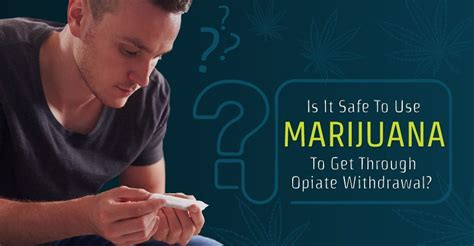 Best Way To Use Methadon To Detox Opiats by Is It Safe To Use Marijuana To Get Through Opiate Withdrawal