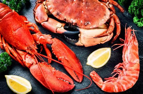 purina alimentos 191 qu 233 las purinas sus efectos en la salud