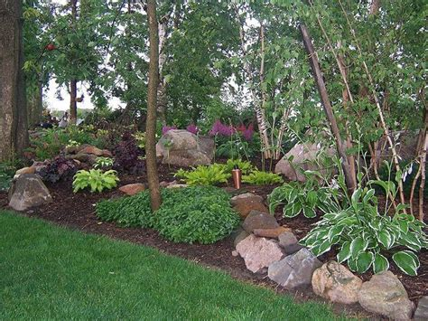 wooded area full shade garden astble heuchera gardens landscaping rock garden shade