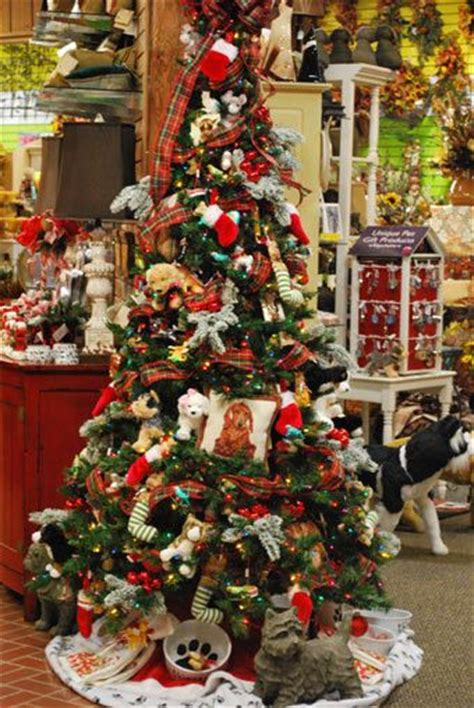 theme the tree everyone bring in things the humane
