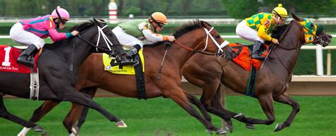 How To Win Money On Horses - election metaphors horse racing metaphors in american politics