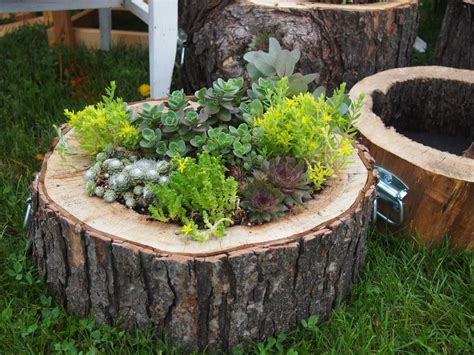 50 best ideas about diy log planter to beautify your