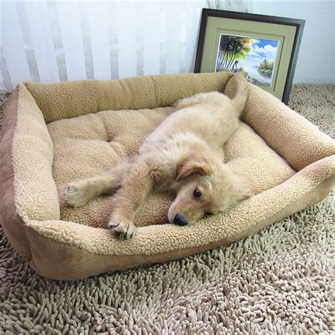Kong Beds For Dogs by Kong Bed Ideas Invisibleinkradio Home Decor