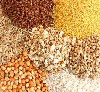 6 servings of whole grains grains