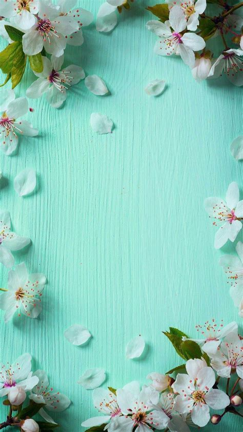 beautiful spring wallpapers  iphone pixelstalknet