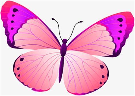 imagenes mariposas animadas dibujos animados de mariposas related keywords dibujos
