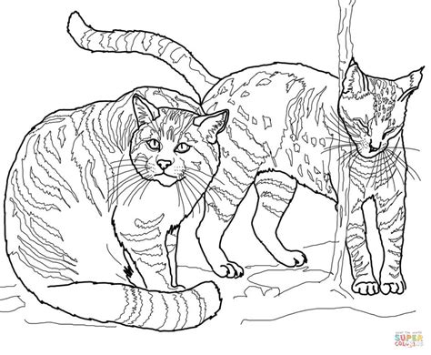 european wildcats coloring page  printable coloring