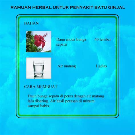 kombinasi hipnotherapy akupunktur tcm  herbal indonesia