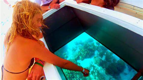 glass bottom boat tours in key west glass bottom boat tours key west florida youtube