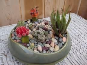 How To Decorate Cactus Indoor » Ideas Home Design