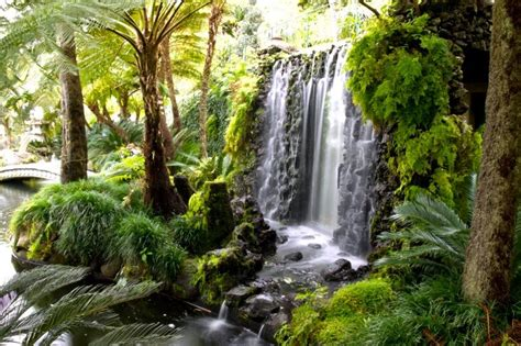 Beautiful Botanical Gardens The Most Beautiful Botanical Gardens In Madeira