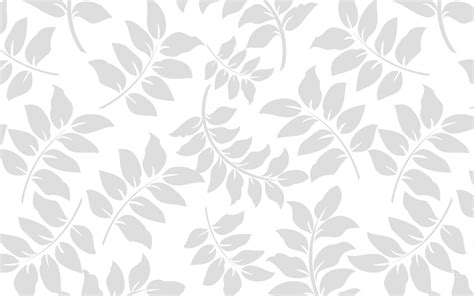white design free white background images