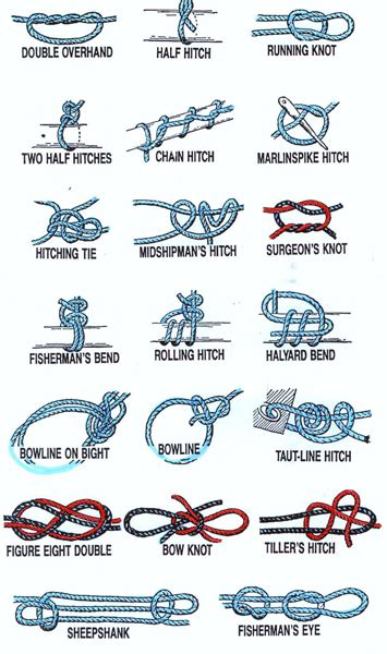 printable instructions knot tying survival knots ranger knots basic knots info