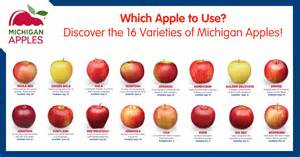 which apple to use discover the 16 varieties of michigan