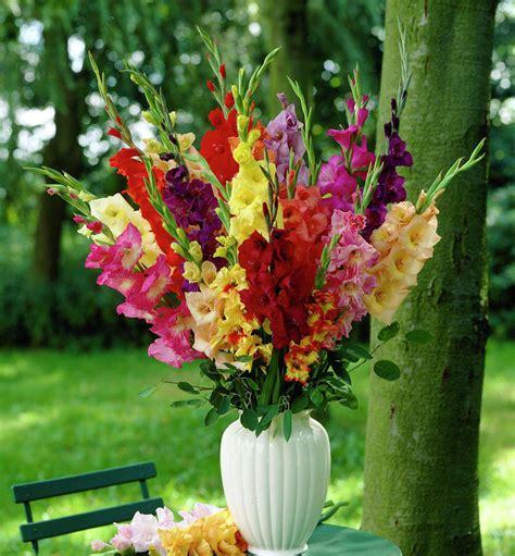 Still Waters Notes From A Virginia Shire Cut Flower Bouquets Garden Flower Arrangements