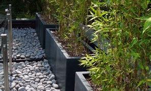 Bac Bambou Terrasse by Bambous En Bacs Ou En Pots Destin 233 S Aux Terrasses En Belgique