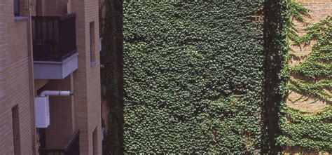 apartamentos amueblados madrid alquiler apartamentos amueblados en madrid por meses