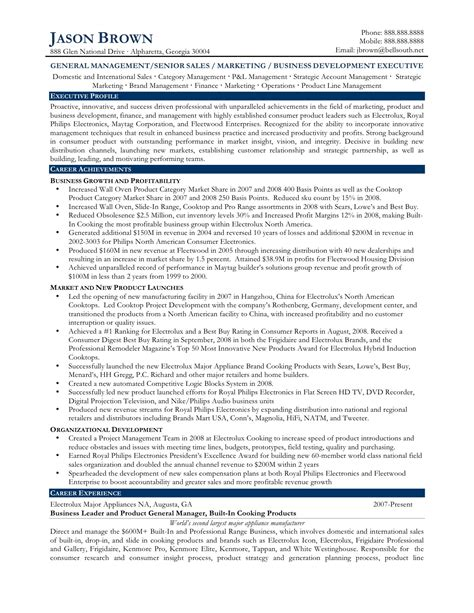 business executive resume sle sle resume sales development manager product development