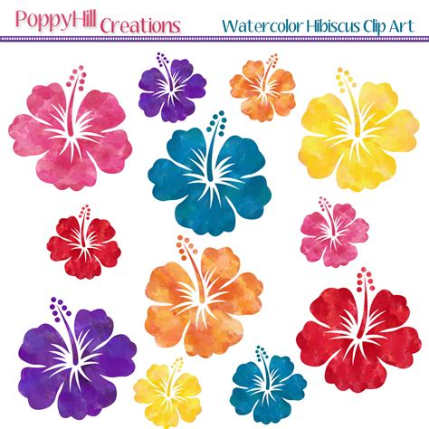 free printable tropical flowers hibiscus clipart hawaii background pencil and in color