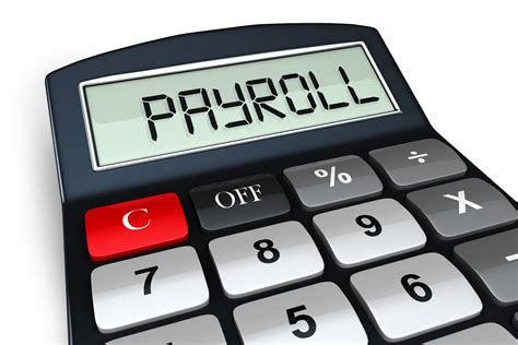 paydayusa employment tax calculator and payroll organizer