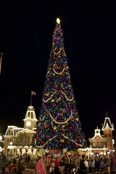 buddy the elf walt disney world s christmas trees