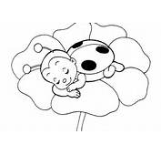 Ladybug Coloring Picture Free Sheet Cute