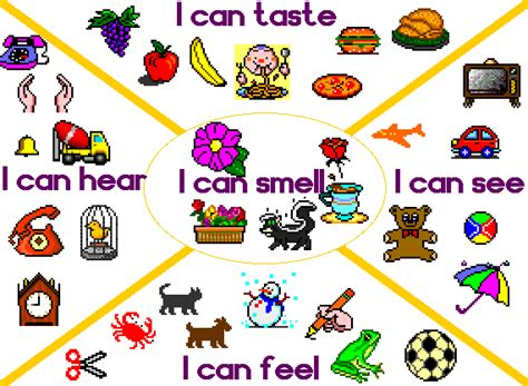Toaster Definition English Language Images The Five Senses Wallpaper And