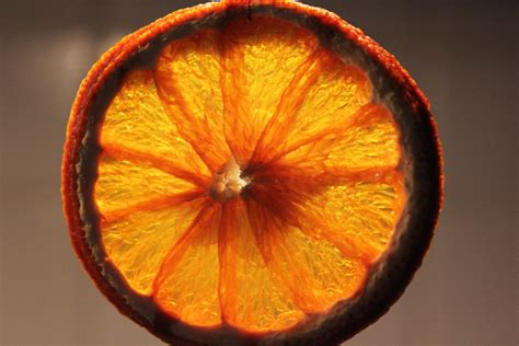 how to dry oranges for christmas decorations