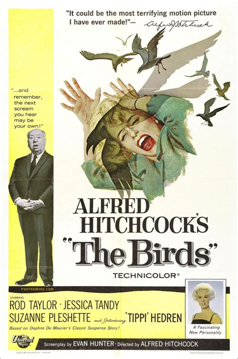 the birds think smart designs best classic alfred hitchcock s