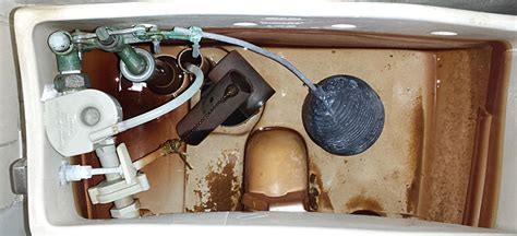 Standard Plumbing Concord by American Standard Toilet 2004 Concord Pictures And Parts