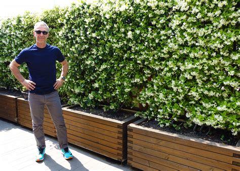 gelsomino in terrazzo stunning gelsomino terrazzo contemporary idee