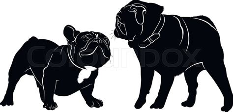 meeting animals dogs french bulldog and pug stock vector