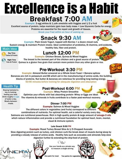 Dieting Guide by Diet And Healthy Tips And Schedule Pictures Photos