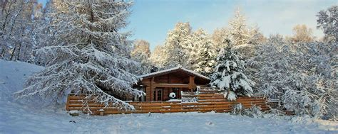 Cabin In The Woods Scotland by Aviemore Log Cabins