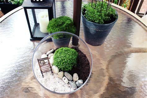 gardens in glass containers mini container gardens