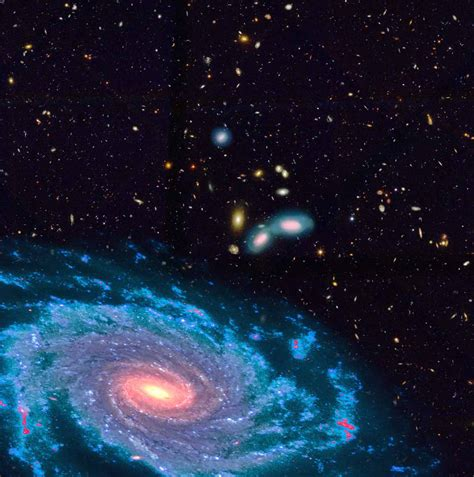 Galaxy L galaxies