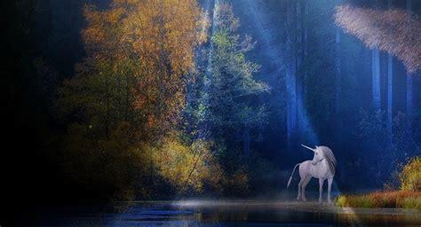 imagenes de unicornios de verdad unicornios de verdad bing images