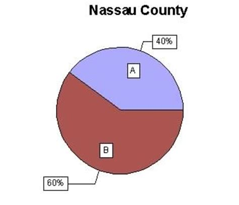 Nassau County New York Court Records Fiduciary Appointments In New York