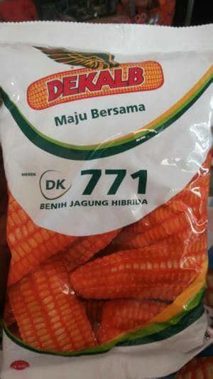 Benih Jagung Dk jual benih jagung hibrida dk771 dadimakmur