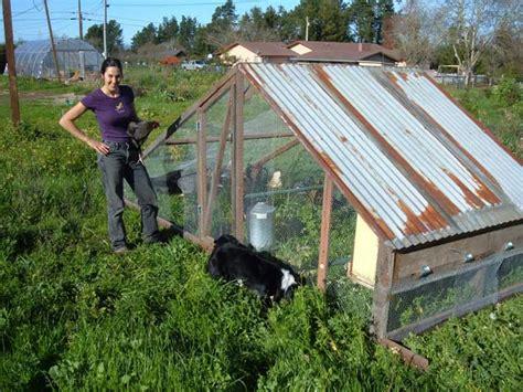 an interview with deborah grace kraft of catchtail garden