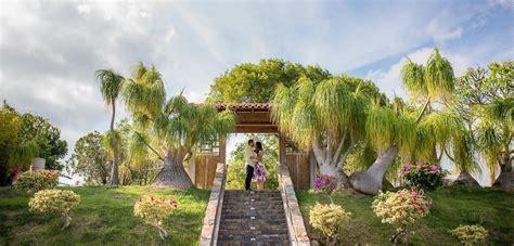 jardin japones ponce love story en jard 237 n japon 233 s de ponce puerto rico