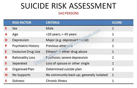 the suicidal crisis clinical guide to the assessment of imminent risk books risk assessment sad persons updated medik ukm