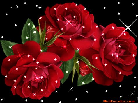 imagenes de flores brillantes con movimiento magestuosas imagenes de rosas brillantes con movimiento