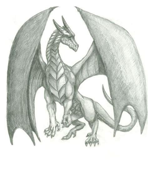 gallery for gt mythical dragon drawings